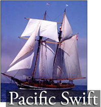 Virtual Tour of the Pacific Swift