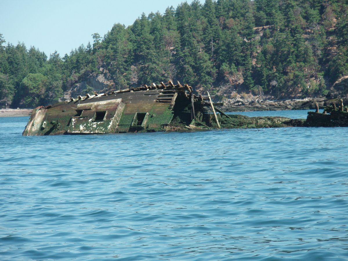 Robertson 2 - July 22 2009