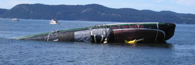 Robby II Aground - From August 15th 2007