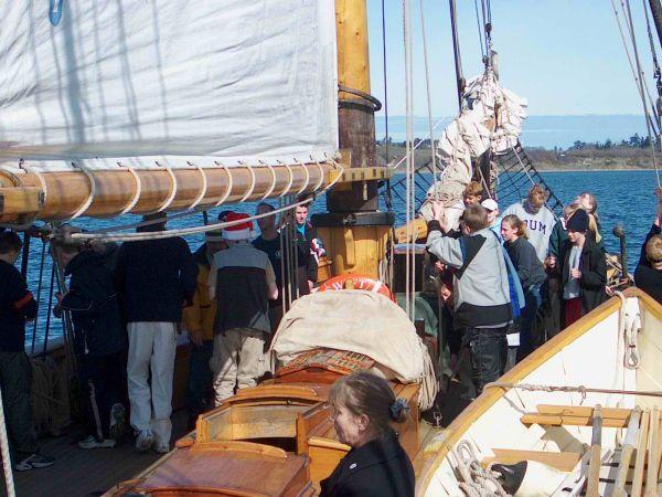 More Sail Raising
