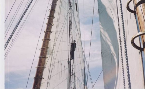 Climbing Among the Sails