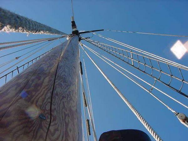 Look Up - Look Waaaaay Up!