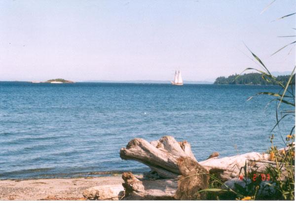 Swift Anchoring under Sail