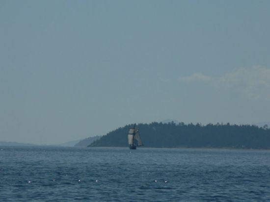 Swift from a distance (with square topsail out)