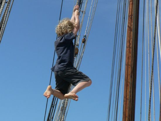 Noah swinging again