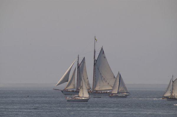 Victoria Tall Ships 2005 #1