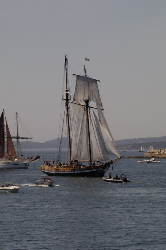 Victoria Tall Ships 2005 #21