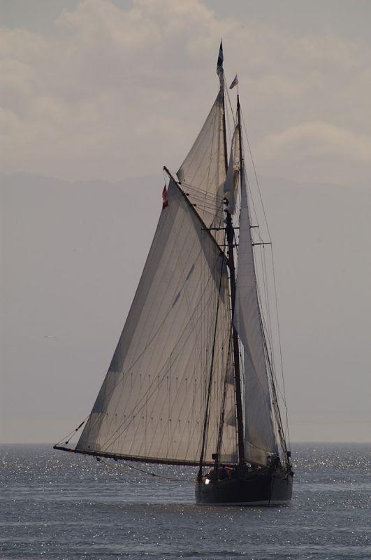 Victoria Tall Ships 2005 #102