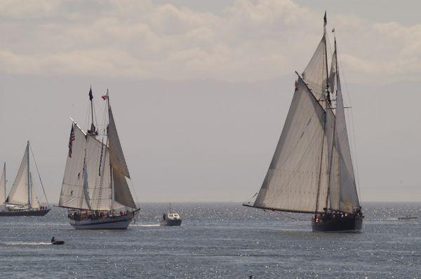 Victoria Tall Ships 2005 #103