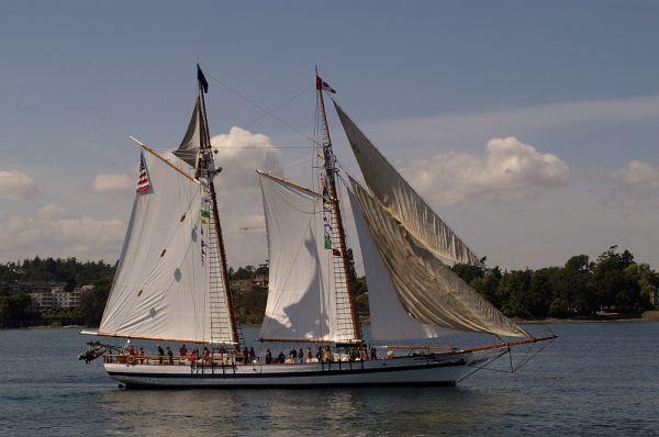 Victoria Tall Ships 2005 #117