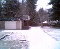 My Backyard Webcam